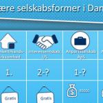 infografik om selskabsformer
